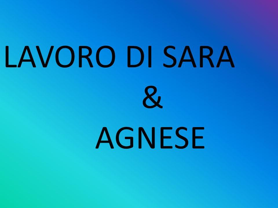 LAVORO DI SARA & AGNESE