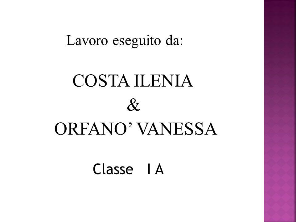 Lavoro eseguito da: COSTA ILENIA & ORFANO VANESSA Classe I A