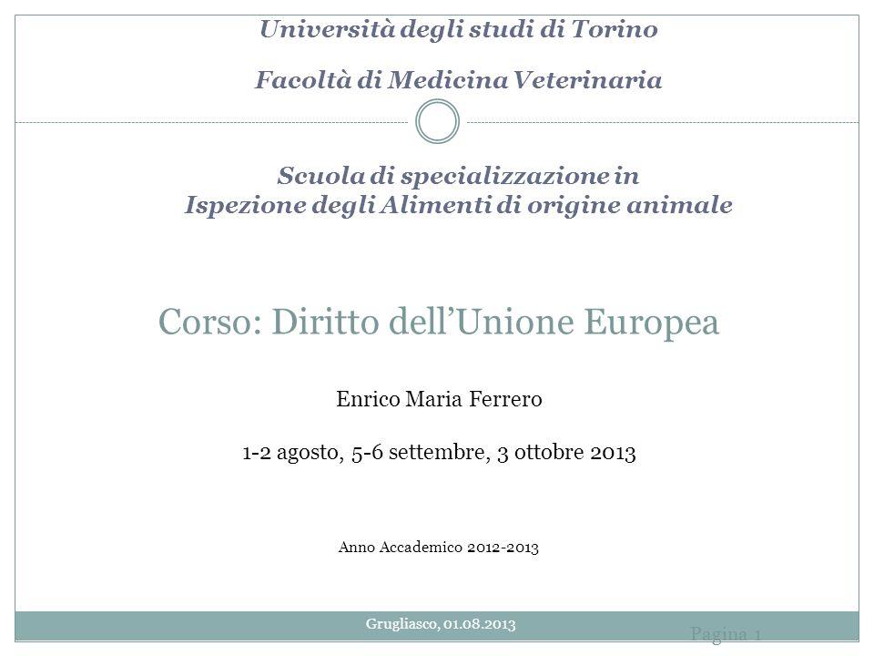 Corso: Diritto dellUnione Europea Enrico Maria Ferrero 1-2 agosto, 5-6 settembre, 3 ottobre 2013 Anno Accademico 2012-2013 Università degli studi di T