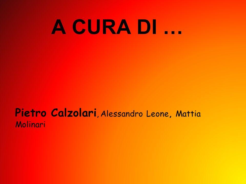 A CURA DI … Pietro Calzolari, Alessandro Leone, Mattia Molinari
