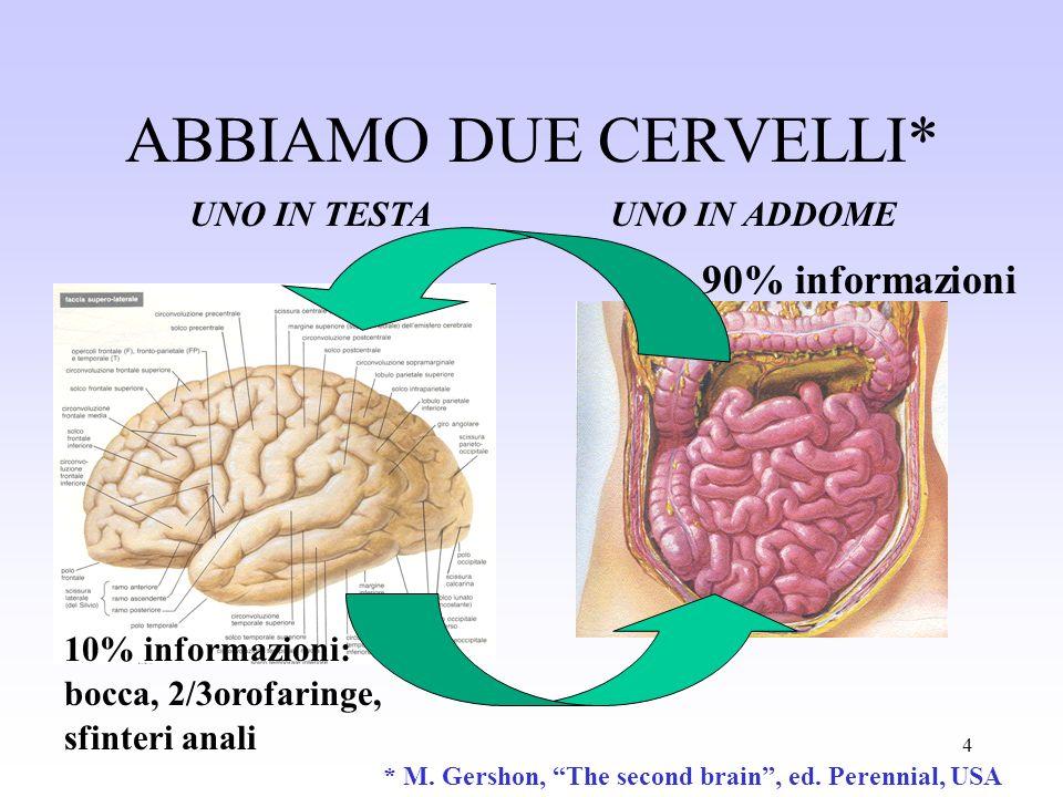 4 ABBIAMO DUE CERVELLI* UNO IN TESTAUNO IN ADDOME 10% informazioni: bocca, 2/3orofaringe, sfinteri anali 90% informazioni * M. Gershon, The second bra