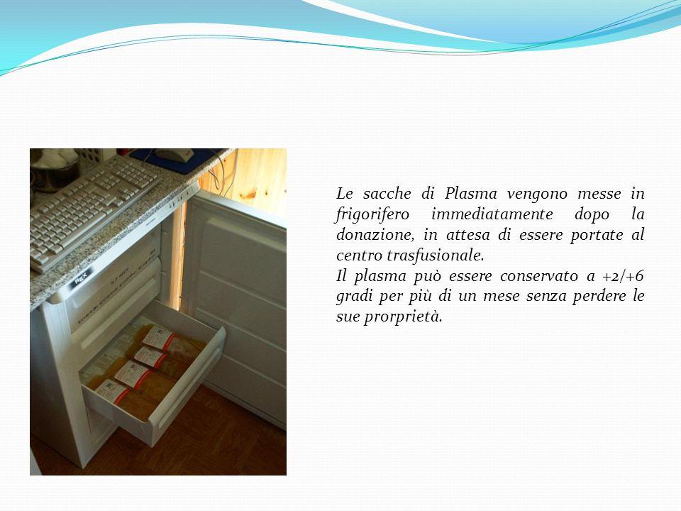 Le sacche di Plasma vengono messe in frigorifero immediatamente dopo la donazione, in attesa di essere portate al centro trasfusionale. Il plasma può