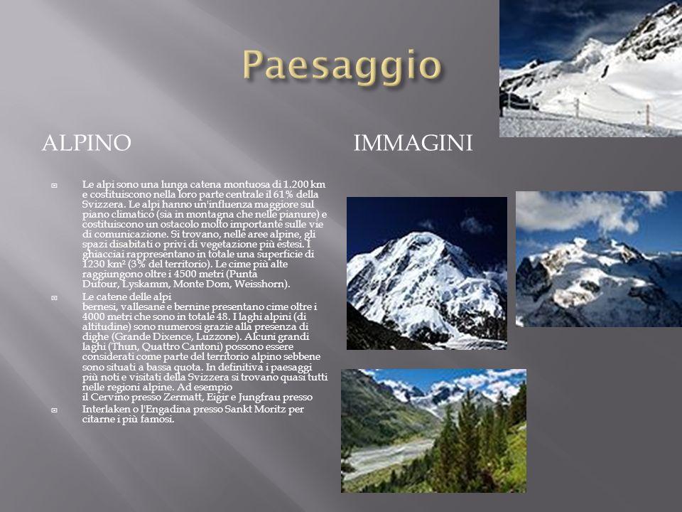 ALPINO IMMAGINI Le alpi sono una lunga catena montuosa di 1.200 km e costituiscono nella loro parte centrale il 61% della Svizzera. Le alpi hanno un'i