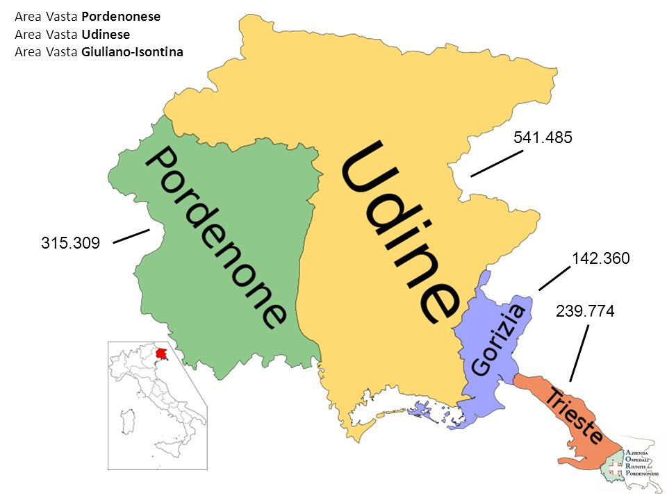 Area Vasta Pordenonese Area Vasta Udinese Area Vasta Giuliano-Isontina 315.309 541.485 142.360 239.774