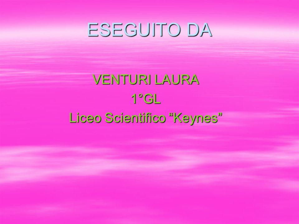 ESEGUITO DA VENTURI LAURA 1°GL Liceo Scientifico Keynes