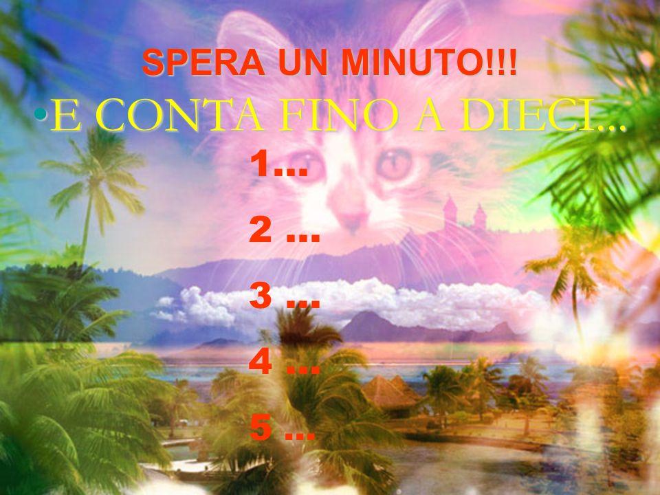 SPERA UN MINUTO!!! E CONTA FINO A DIECI...E CONTA FINO A DIECI... 1... 2... 3... 4... 5...