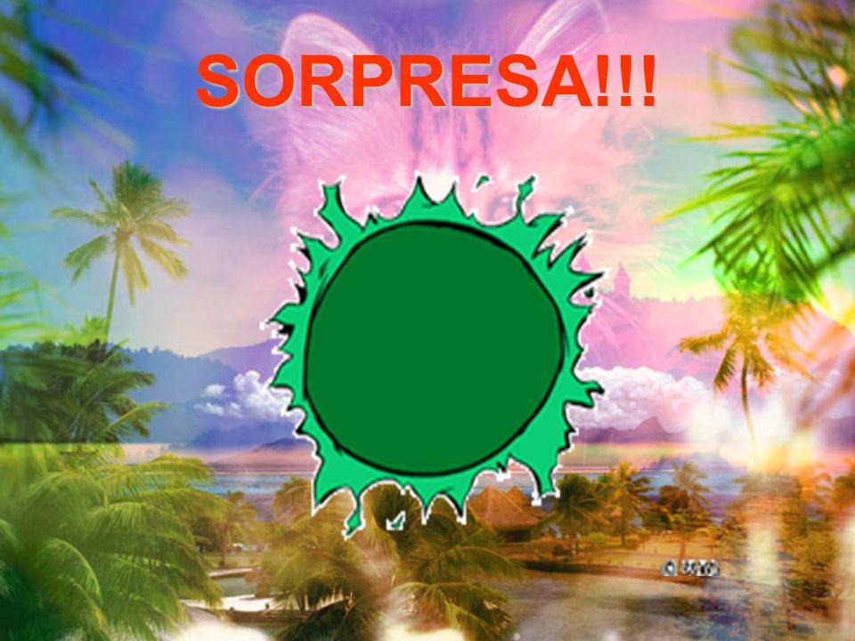 SORPRESA!!!