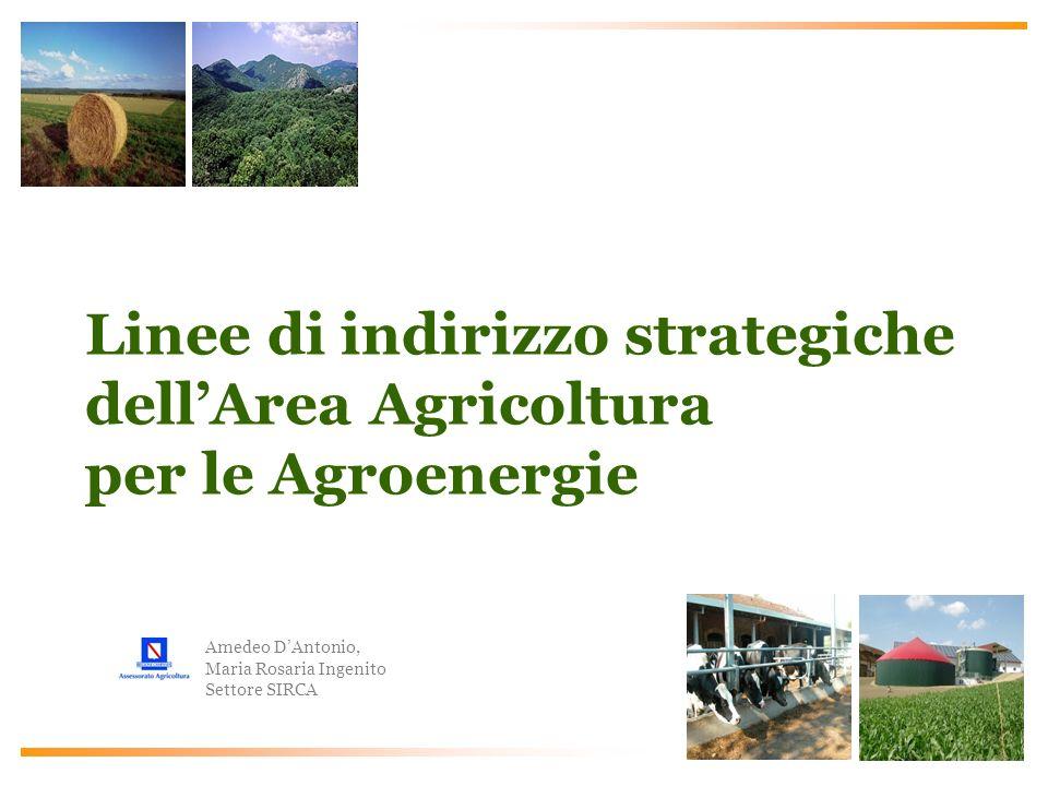 Amedeo DAntonio, Maria Rosaria Ingenito Settore SIRCA Linee di indirizzo strategiche dellArea Agricoltura per le Agroenergie