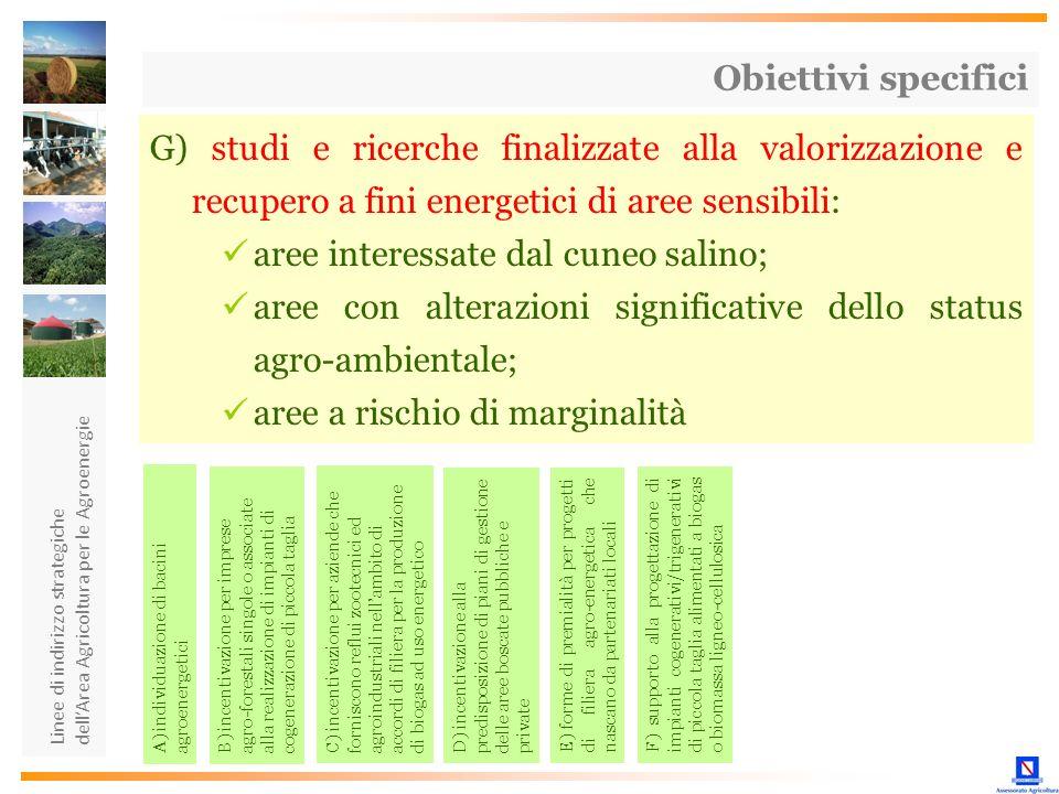 Linee di indirizzo strategiche dellArea Agricoltura per le Agroenergie G) studi e ricerche finalizzate alla valorizzazione e recupero a fini energetic