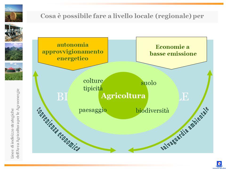 Linee di indirizzo strategiche dellArea Agricoltura per le Agroenergie BILANCIO AMBIENTALE Agricoltura autonomia approvvigionamento energetico Economi
