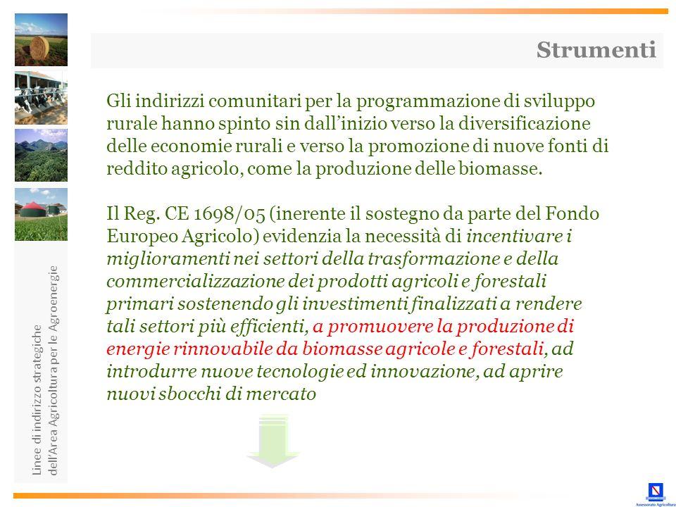 Linee di indirizzo strategiche dellArea Agricoltura per le Agroenergie Gli indirizzi comunitari per la programmazione di sviluppo rurale hanno spinto