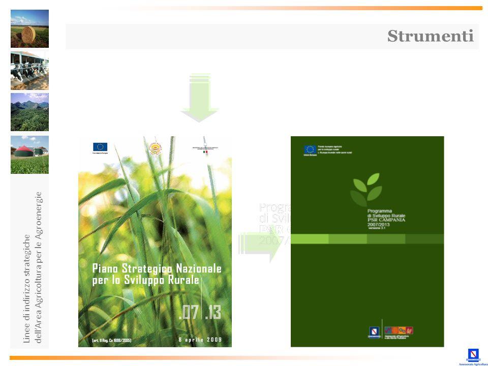 Linee di indirizzo strategiche dellArea Agricoltura per le Agroenergie Strumenti