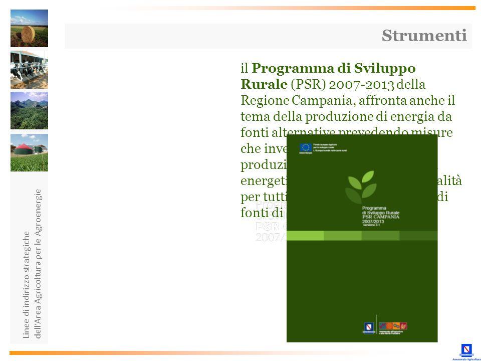 Linee di indirizzo strategiche dellArea Agricoltura per le Agroenergie Strumenti il Programma di Sviluppo Rurale (PSR) 2007-2013 della Regione Campani