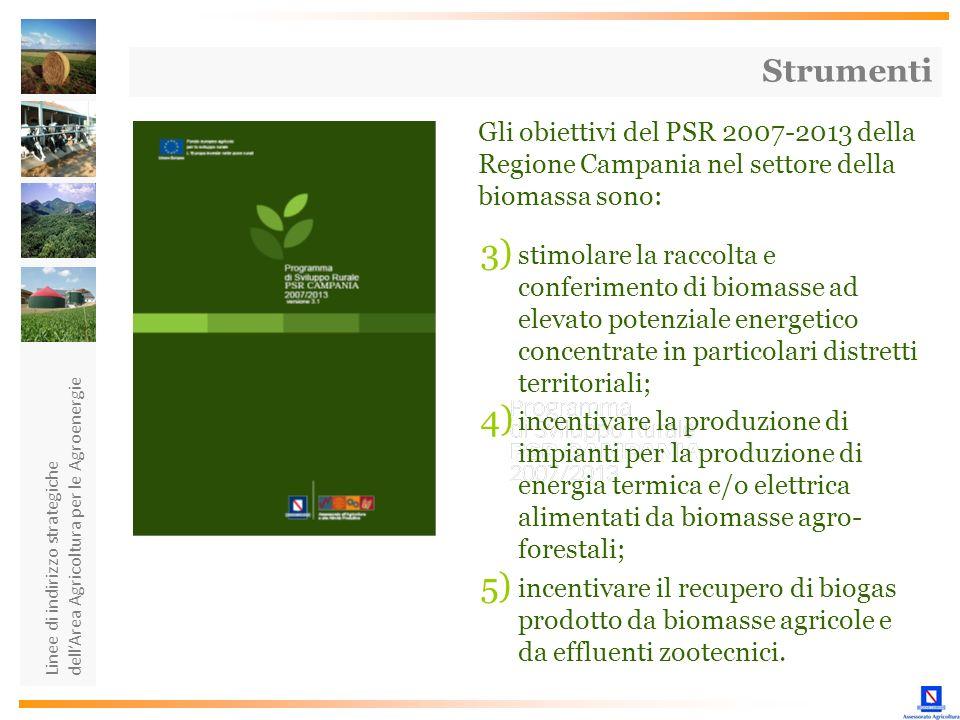Linee di indirizzo strategiche dellArea Agricoltura per le Agroenergie Strumenti Gli obiettivi del PSR 2007-2013 della Regione Campania nel settore de