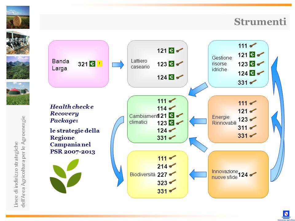 Linee di indirizzo strategiche dellArea Agricoltura per le Agroenergie Innovazione nuove sfide 124 Lattiero caseario Gestione risorse idriche 121 123