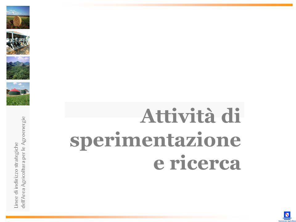 Linee di indirizzo strategiche dellArea Agricoltura per le Agroenergie Attività di sperimentazione e ricerca