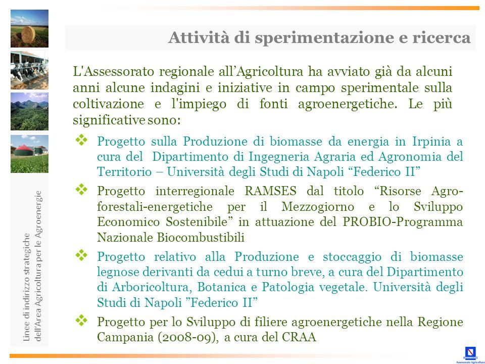 Linee di indirizzo strategiche dellArea Agricoltura per le Agroenergie Attività di sperimentazione e ricerca L'Assessorato regionale allAgricoltura ha