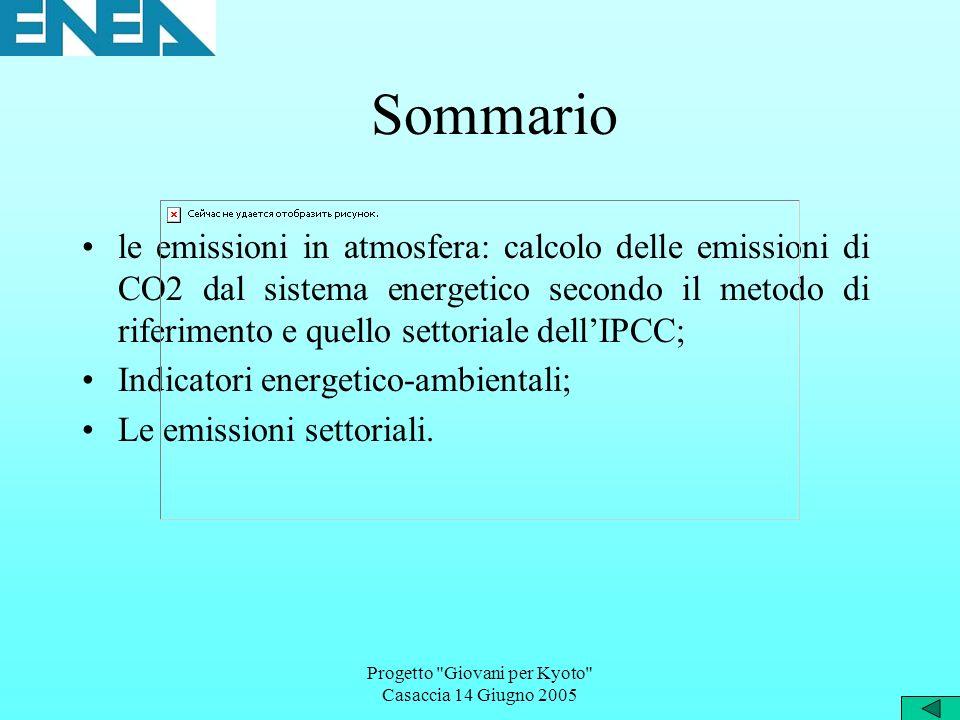 Progetto Giovani per Kyoto Casaccia 14 Giugno 2005 Sommario le emissioni in atmosfera: calcolo delle emissioni di CO2 dal sistema energetico secondo il metodo di riferimento e quello settoriale dellIPCC; Indicatori energetico-ambientali; Le emissioni settoriali.