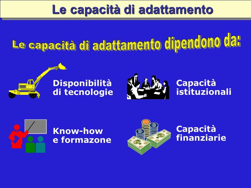 Disponibilità di tecnologie Capacità istituzionali Know-how e formazone Capacità finanziarie Le capacità di adattamento