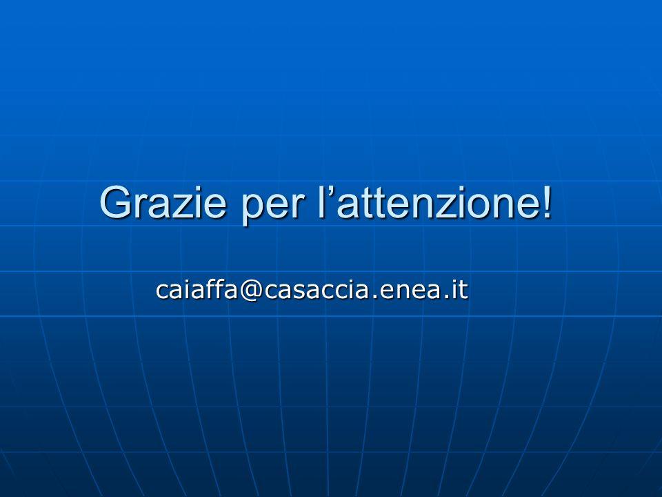 Grazie per lattenzione! caiaffa@casaccia.enea.it
