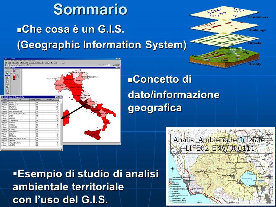 Sommario Concetto di Concetto di dato/informazione geografica Che cosa è un G.I.S. Che cosa è un G.I.S. (Geographic Information System) Esempio di stu