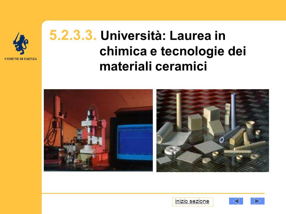 5.2.3.3. Università: Laurea in chimica e tecnologie dei materiali ceramici inizio sezione