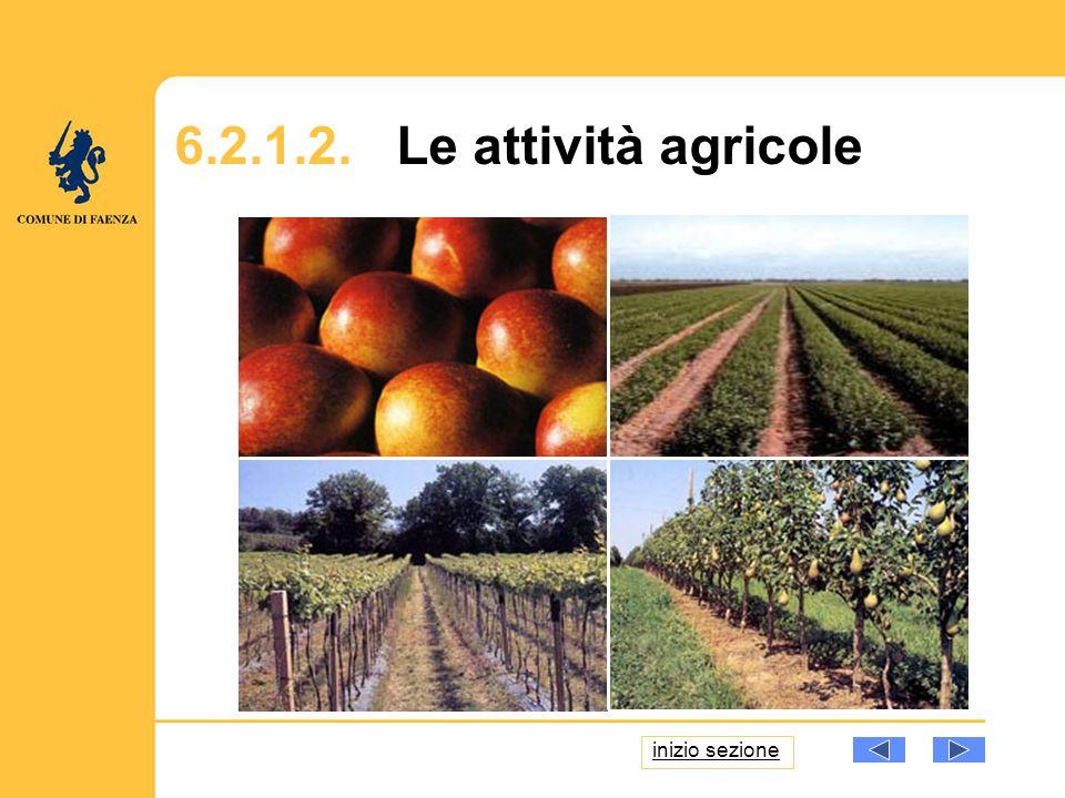 6.2.1.2. Le attività agricole inizio sezione