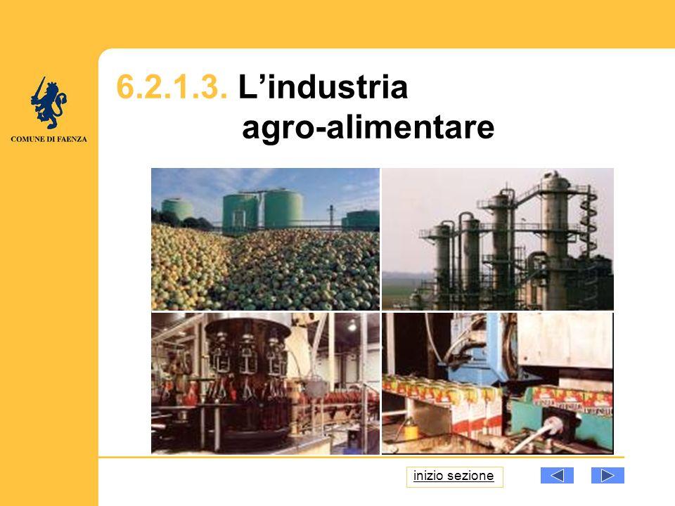 6.2.1.3. Lindustria agro-alimentare inizio sezione