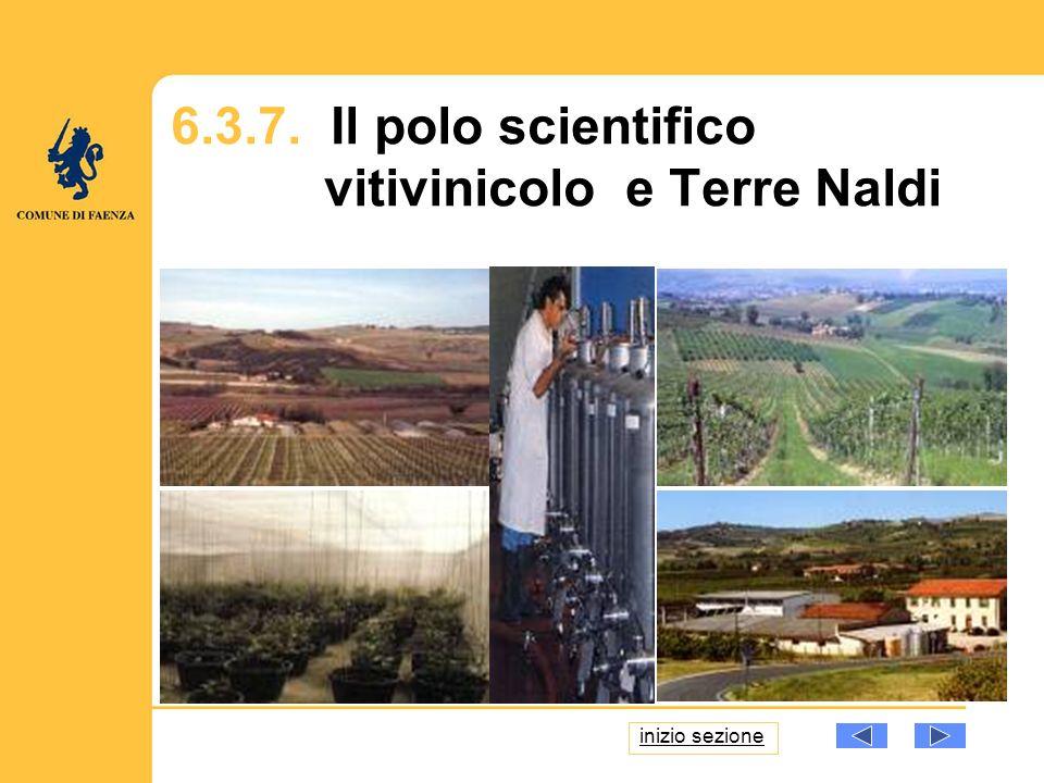 Foto: 6.3.7. Il polo scientifico vitivinicolo e Terre Naldi inizio sezione