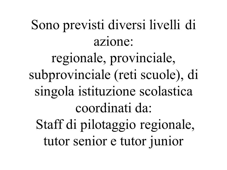 Sono previsti diversi livelli di azione: regionale, provinciale, subprovinciale (reti scuole), di singola istituzione scolastica coordinati da: Staff di pilotaggio regionale, tutor senior e tutor junior