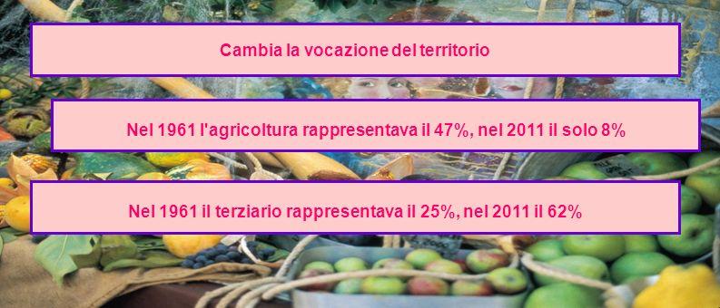 Cambia la vocazione del territorio Nel 1961 l'agricoltura rappresentava il 47%, nel 2011 il solo 8% Nel 1961 il terziario rappresentava il 25%, nel 20