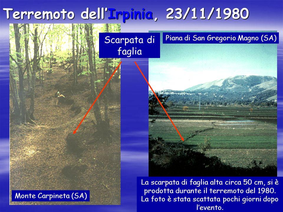 Terremoto dellIrpinia, 23/11/1980 Scarpata di faglia Piana di San Gregorio Magno (SA) Monte Carpineta (SA) La scarpata di faglia alta circa 50 cm, si è prodotta durante il terremoto del 1980.