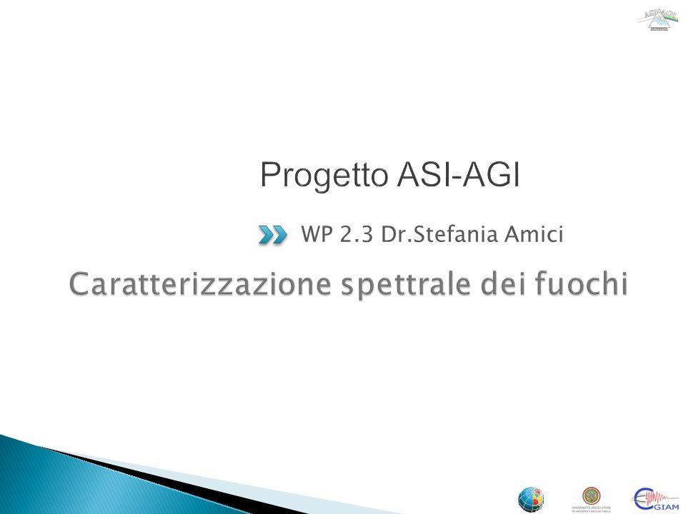 WP 2.3 Dr.Stefania Amici