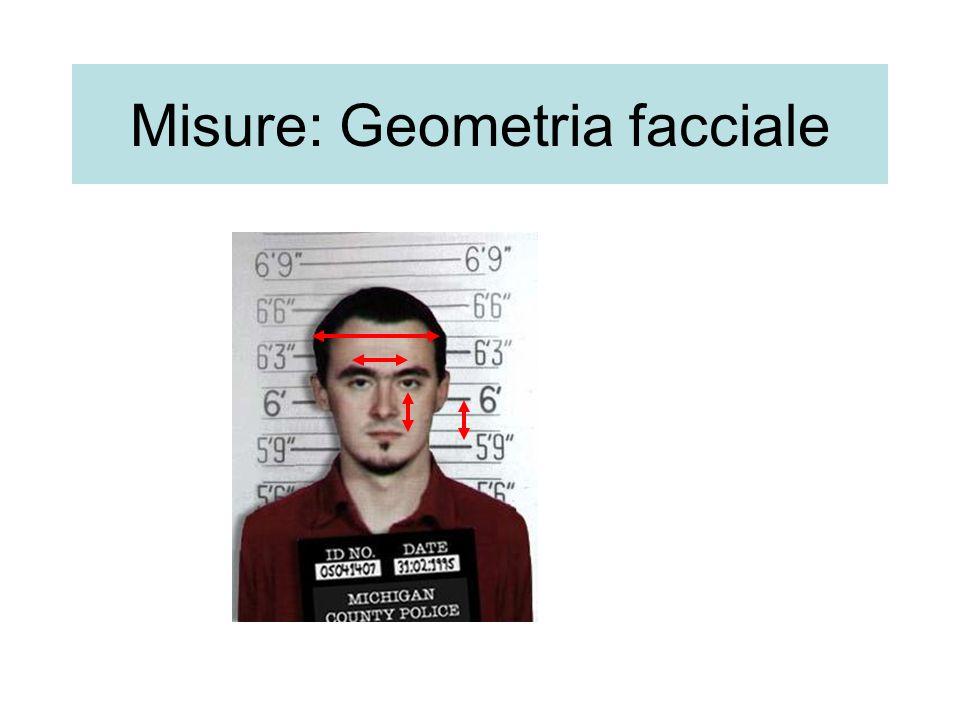 Misure: Geometria facciale