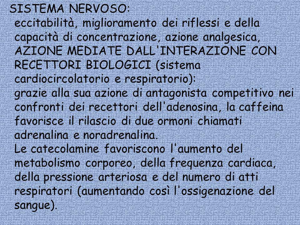 SISTEMA NERVOSO: eccitabilità, miglioramento dei riflessi e della capacità di concentrazione, azione analgesica, AZIONE MEDIATE DALL'INTERAZIONE CON R