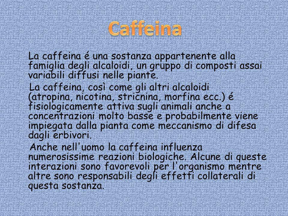 La caffeina é una sostanza appartenente alla famiglia degli alcaloidi, un gruppo di composti assai variabili diffusi nelle piante. La caffeina, così c