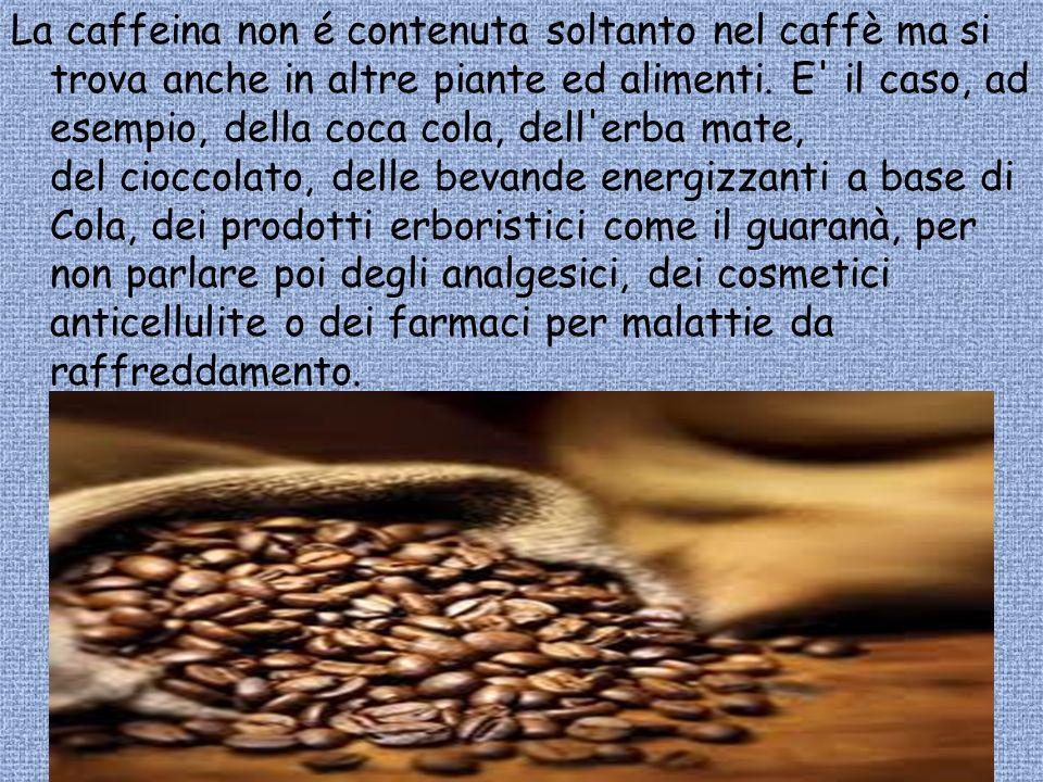 La caffeina non é contenuta soltanto nel caffè ma si trova anche in altre piante ed alimenti. E' il caso, ad esempio, della coca cola, dell'erba mate,