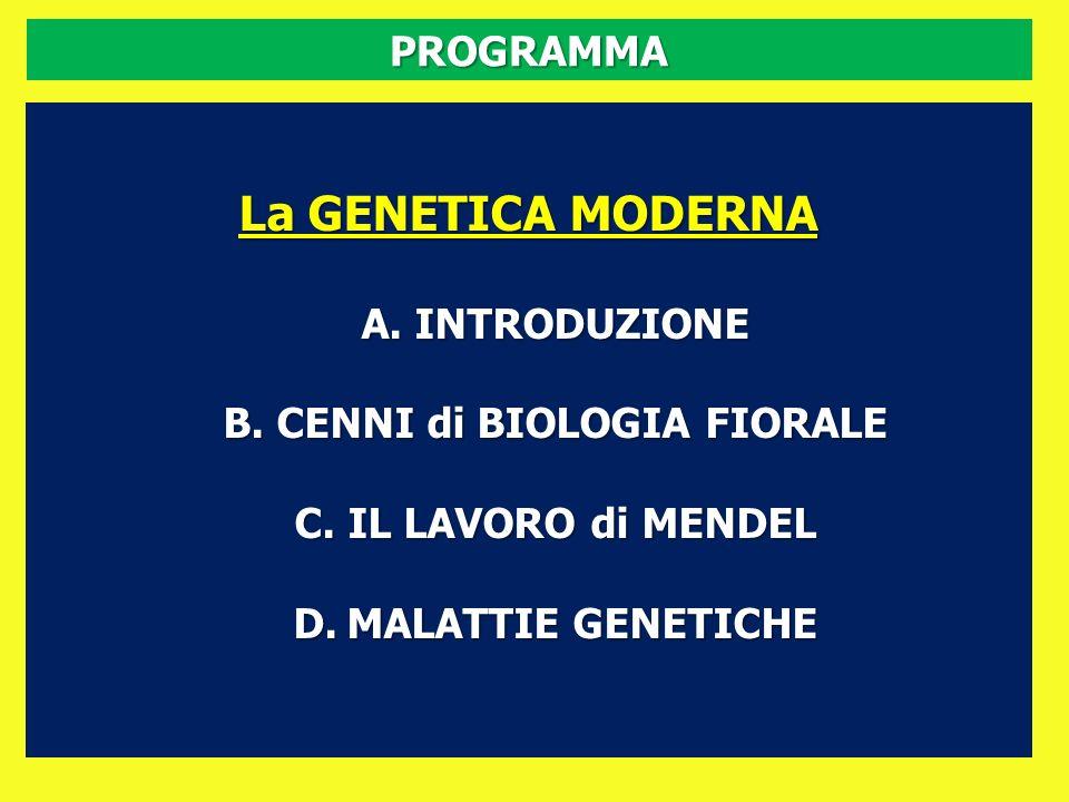 PROGRAMMA La GENETICA MODERNA A.INTRODUZIONE B.CENNI di BIOLOGIA FIORALE C.IL LAVORO di MENDEL D.MALATTIE GENETICHE