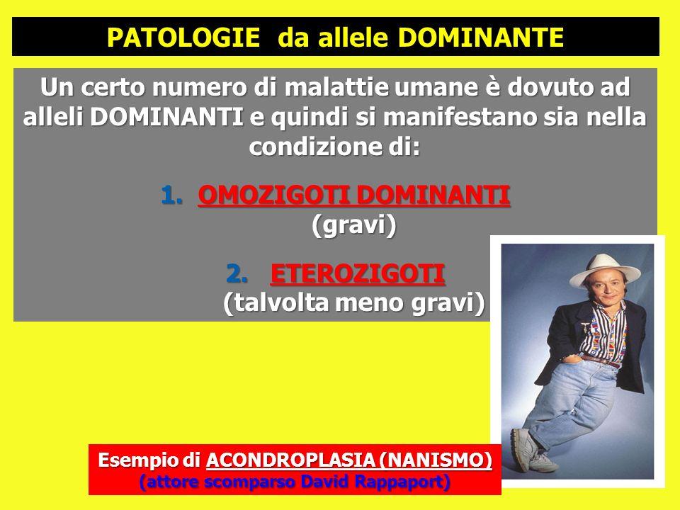 Un certo numero di malattie umane è dovuto ad alleli DOMINANTI e quindi si manifestano sia nella condizione di: 1.OMOZIGOTI DOMINANTI (gravi) 2. ETERO