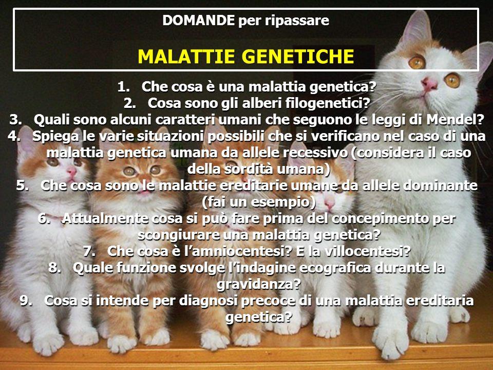 DOMANDE per ripassare MALATTIE GENETICHE 1.Che cosa è una malattia genetica? 2.Cosa sono gli alberi filogenetici? 3.Quali sono alcuni caratteri umani