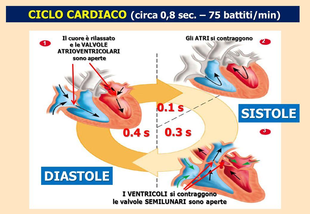 CICLO CARDIACO (circa 0,8 sec. – 75 battiti/min) Il cuore è rilassato e le VALVOLE ATRIOVENTRICOLARI sono aperte 1 Gli ATRI si contraggono DIASTOLE 0.