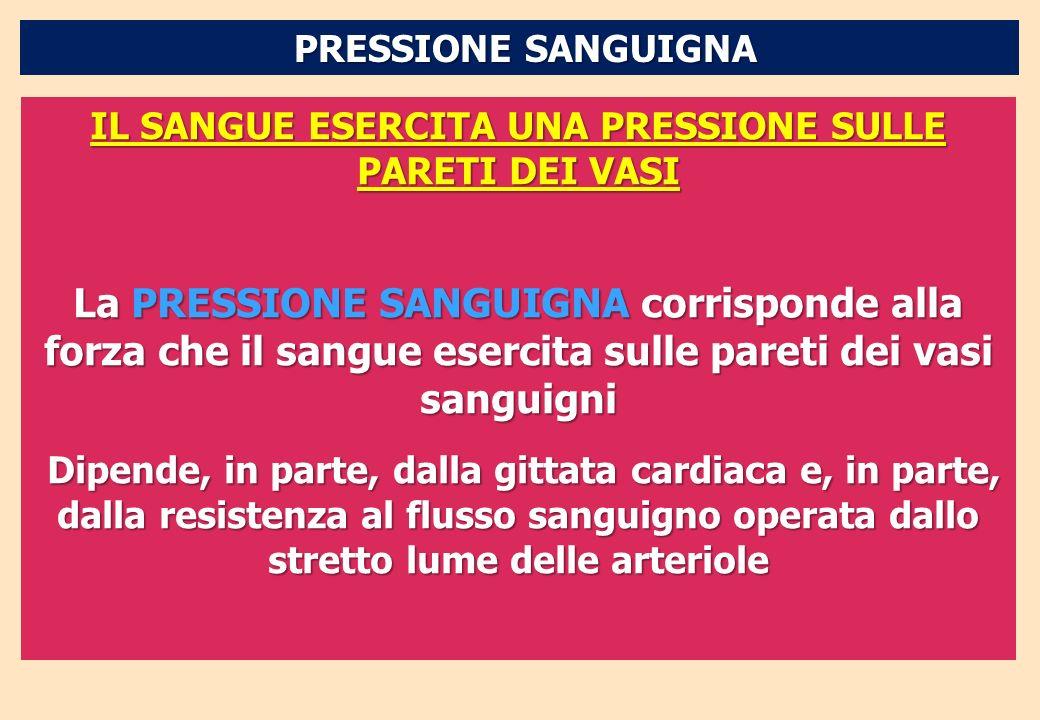 IL SANGUE ESERCITA UNA PRESSIONE SULLE PARETI DEI VASI La PRESSIONE SANGUIGNA corrisponde alla forza che il sangue esercita sulle pareti dei vasi sang