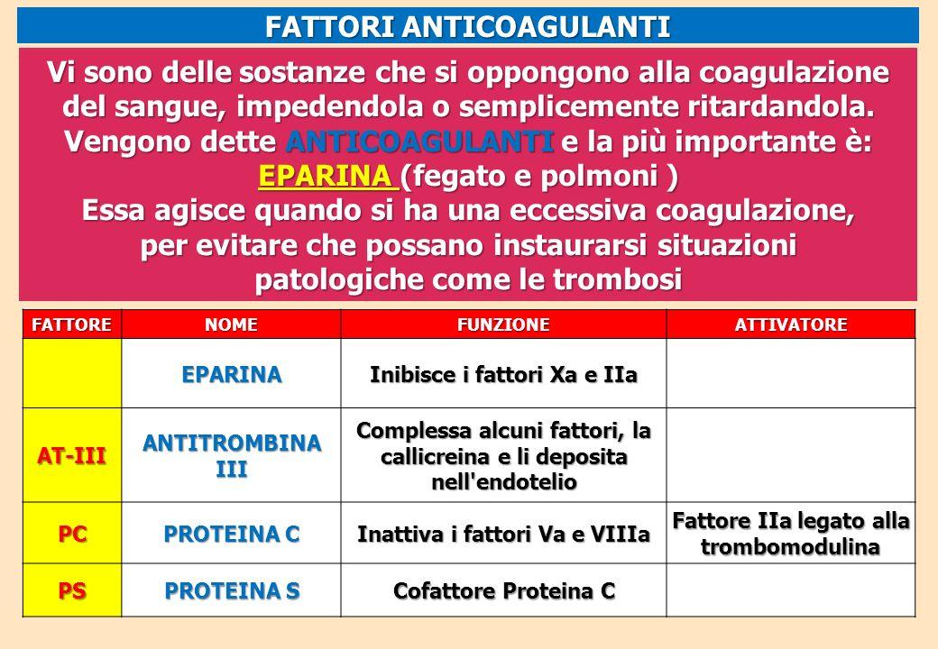 FATTORENOMEFUNZIONEATTIVATORE EPARINA Inibisce i fattori Xa e IIa AT-III ANTITROMBINA III Complessa alcuni fattori, la callicreina e li deposita nell'