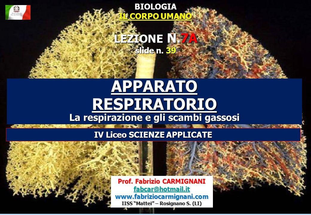 Prof. Fabrizio CARMIGNANI fabcar@hotmail.it www.fabriziocarmignani.com IISS Mattei – Rosignano S. (LI) APPARATO RESPIRATORIO La respirazione e gli sca