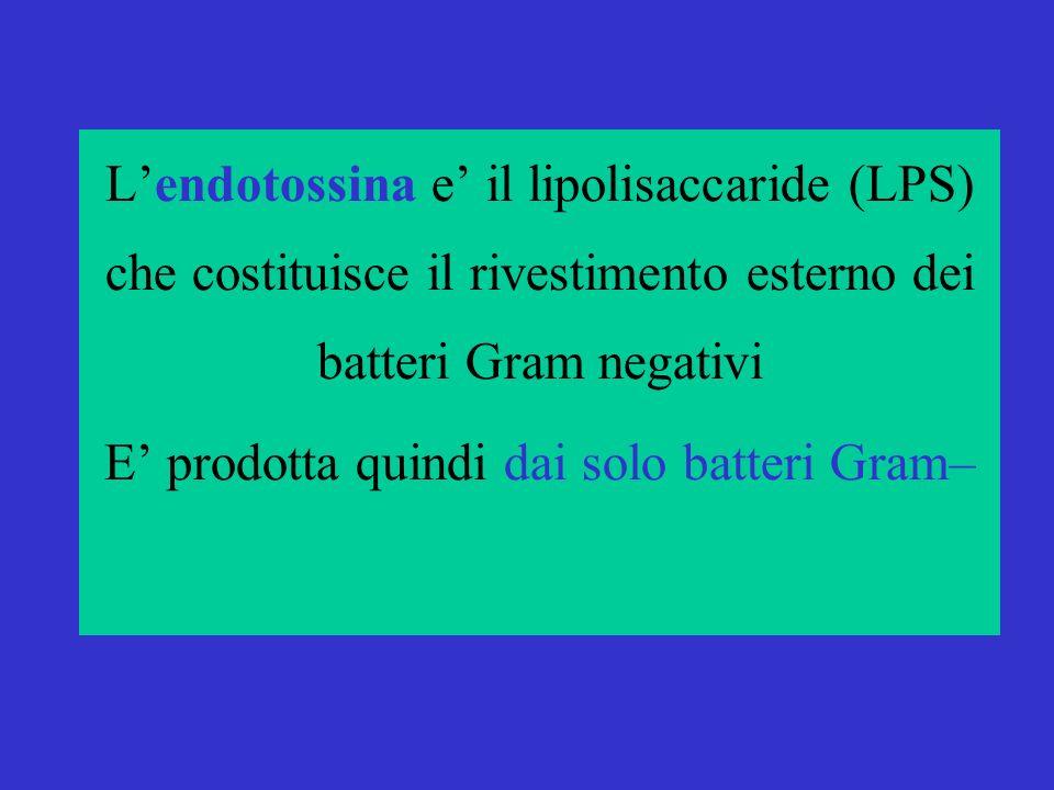 Le tossine batteriche-2 Lendotossina e il lipolisaccaride (LPS) che costituisce il rivestimento esterno dei batteri Gram negativi E prodotta quindi dai solo batteri Gram–