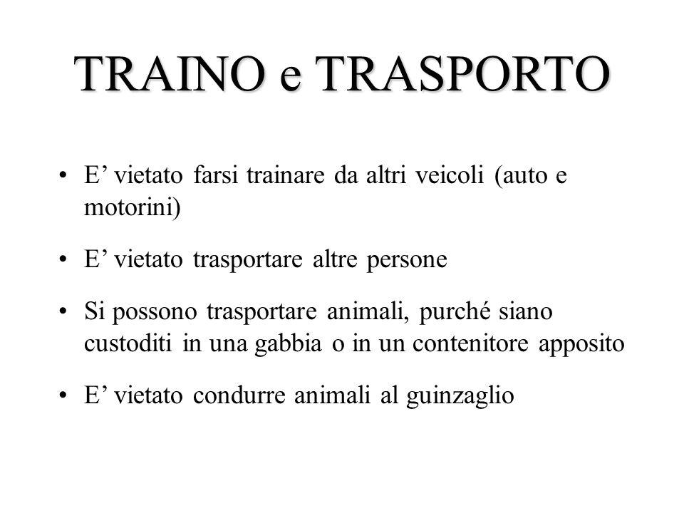 TRAINO e TRASPORTO E vietato farsi trainare da altri veicoli (auto e motorini) E vietato trasportare altre persone Si possono trasportare animali, pur