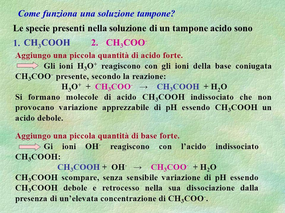 Le specie presenti nella soluzione di un tampone acido sono Aggiungo una piccola quantità di acido forte.