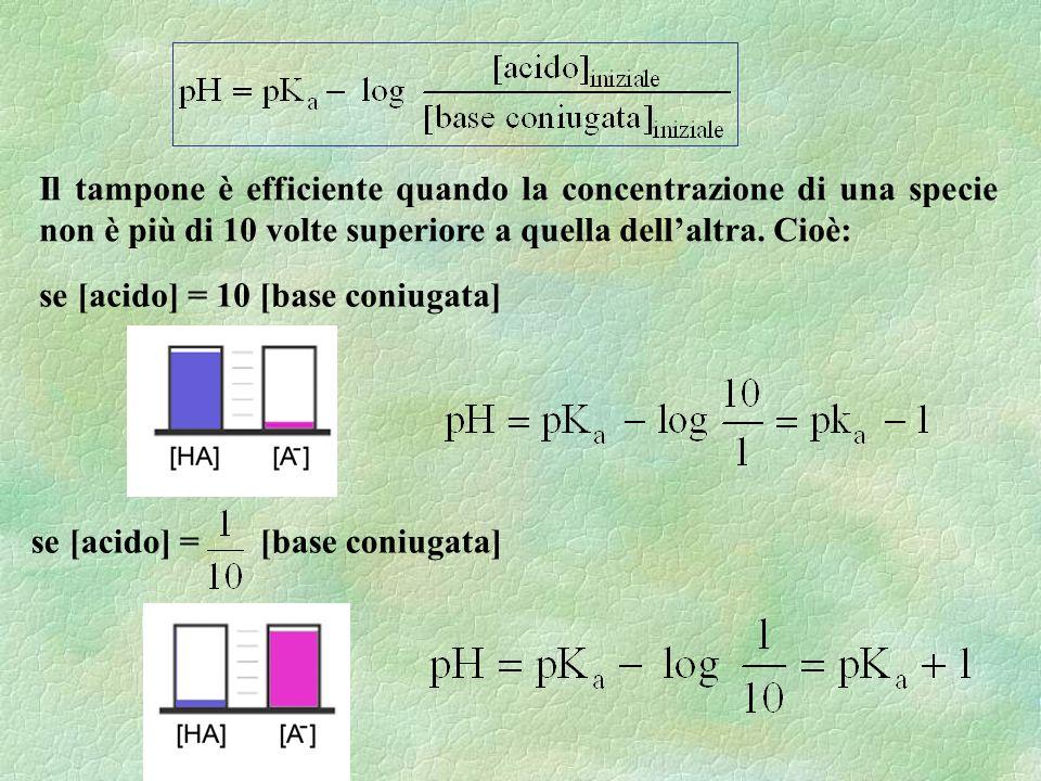Il tampone è efficiente quando la concentrazione di una specie non è più di 10 volte superiore a quella dellaltra. Cioè: se [acido] = 10 [base coniuga
