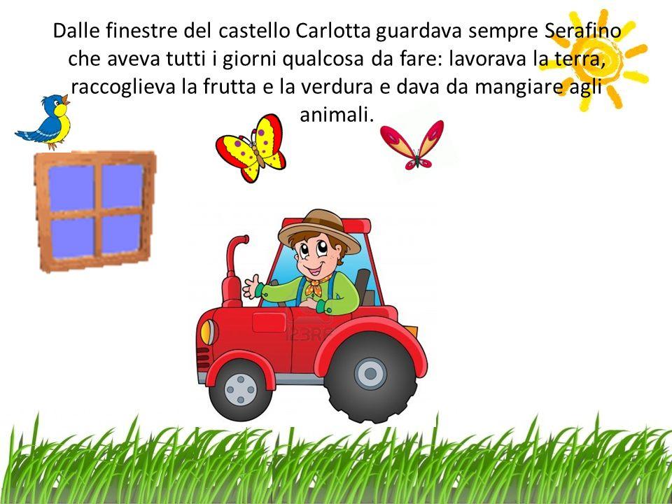 Dalle finestre del castello Carlotta guardava sempre Serafino che aveva tutti i giorni qualcosa da fare: lavorava la terra, raccoglieva la frutta e la