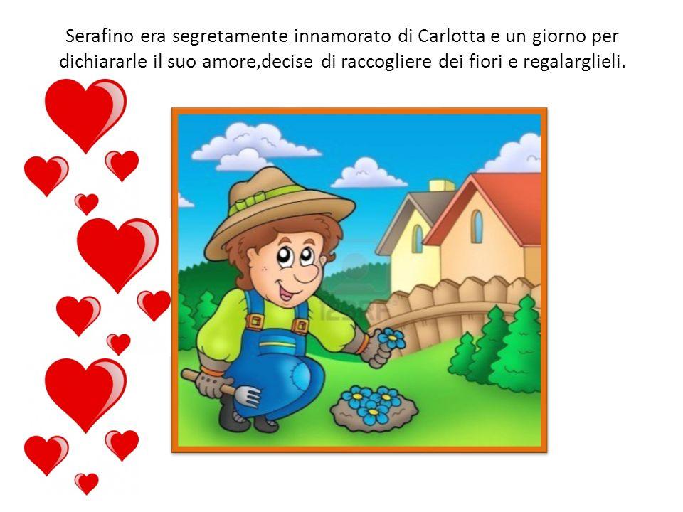 Serafino era segretamente innamorato di Carlotta e un giorno per dichiararle il suo amore,decise di raccogliere dei fiori e regalarglieli.